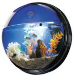 Wandaquarium Circle Blue